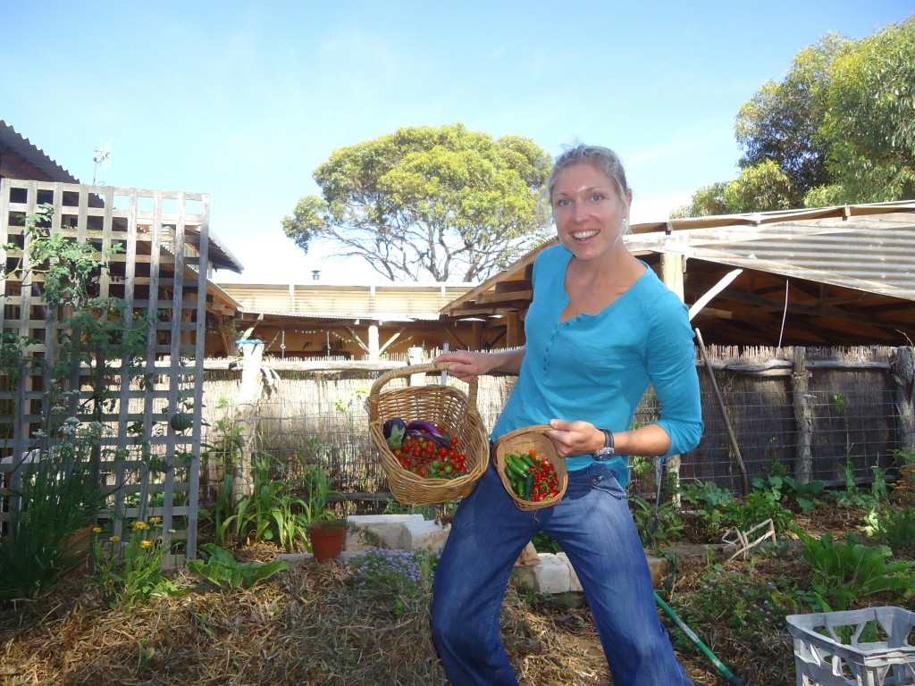 WWOOF Reviews