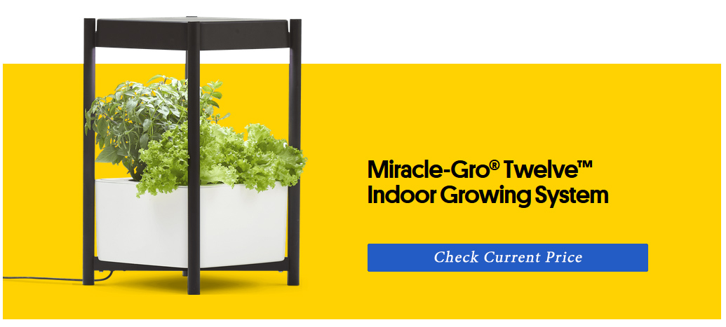 the best indoor growing systems