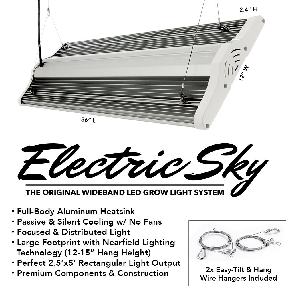 Electric Sky ES300